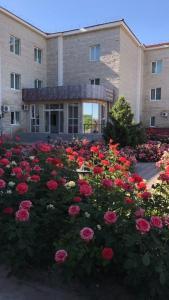 Hotel Ark MS, Hotely  Taraz - big - 61