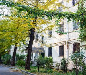 Apartment at Universitetskaya 33