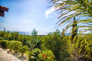 Villa Olivia, Villák  Korall-öböl - big - 2
