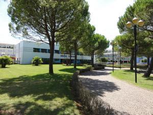 REJI - Appartamenti, Apartmány  Bibione - big - 6