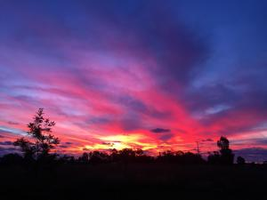 Cabañas Kainga, Nyaralók  Hanga Roa - big - 2