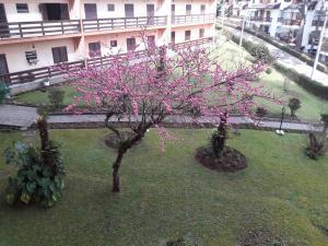 Apartamento no Centro Capivari