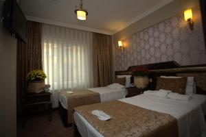 Sultanahmet Park Hotel, Hotely  Istanbul - big - 14