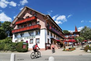 obrázek - Wochner's Hotel-Sternen