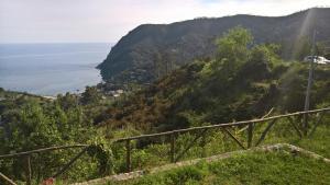 B&B PARK&BEACH MONTEROSSO HILL SEA VIEW, Vily  Monterosso al Mare - big - 7