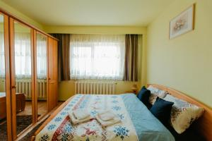 Carpati Premium Apartment - Baia Mare