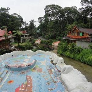 Hosteria Hachacaspi, Locande  Puyo - big - 56