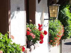 Hotel Gasthaus Adler, Hotely  Glottertal - big - 9