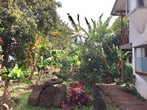 Hostal Marari, Guest houses  Hanga Roa - big - 30