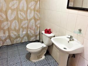 Hostal Marari, Guest houses  Hanga Roa - big - 13