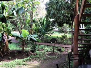 Hostal Marari, Гостевые дома  Ханга-Роа - big - 23