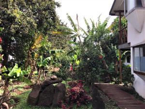 Hostal Marari, Guest houses  Hanga Roa - big - 24