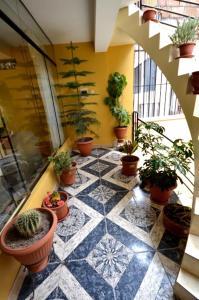 Posada del Colibri, Apartmanok  Cuzco - big - 10