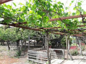 Casa de Campo Olmué