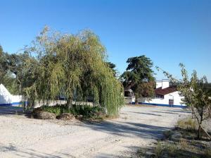 Herdade Da Amendoeira, Penzióny  Arraiolos - big - 53