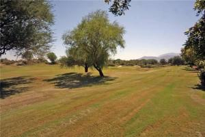 54914 Oak Tree, Holiday homes  La Quinta - big - 11