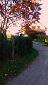 House Mihaela&nina