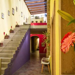 obrázek - Monte Leon Hotel Boutique & Galeria