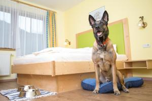 Hotel Grimming Dogs and Friends - Rauris