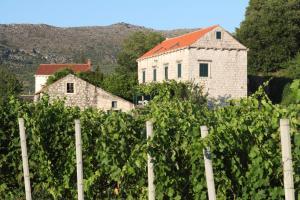 Villa Violic