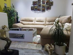 ivo - Apartment - Pernik