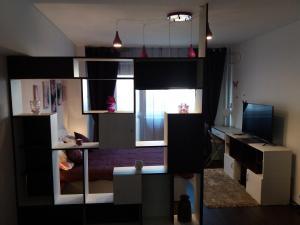 Iness, Apartments  Bucharest - big - 17