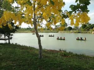obrázek - Natural Reserve - Yucatán Silvestre