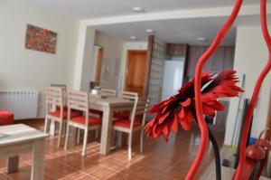 Apartamento Salvia