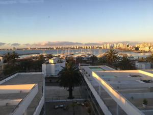 Gala Puerto, Apartments  Punta del Este - big - 9