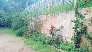 Namma Chikmagaluru NC-GSH, Ubytování v soukromí  Attigundi - big - 55