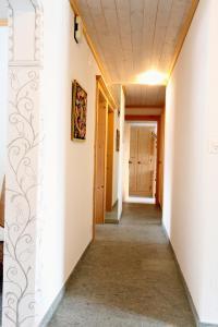 Chalet Drusa, Apartmány  Klosters Serneus - big - 11