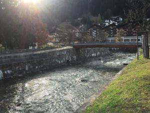 Chalet Drusa, Apartmány  Klosters Serneus - big - 12