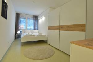 Mondsee, Apartmány  Schladming - big - 15