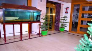 Hotel Susee Park, Hotely  Tiruchchirāppalli - big - 13