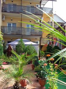Отель AdlerOK - фото 13