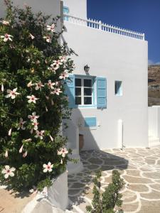 Studios Katerina, Apartmánové hotely  Platis Yialos Mykonos - big - 14