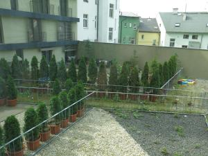 Apartment Violet, Apartments  Karlovy Vary - big - 6