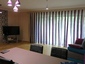 Apartment Violet, Apartments  Karlovy Vary - big - 3
