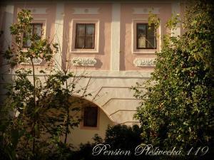 Pension Plešivecká 119, Pensionen  Český Krumlov - big - 39