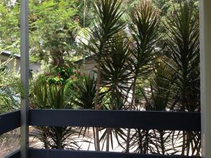 Riverside Tourist Park, Campsites  Rockhampton - big - 10