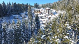 Пампорово - Hotel Forest Glade