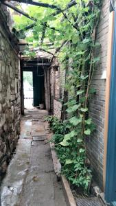 Ji nan International Youth Hostel, Хостелы  Цзинань - big - 12