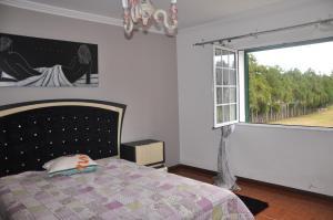 Casa Rua da Cidade, Vidiecke domy  Ponta Delgada - big - 21
