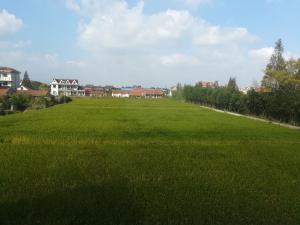 Xiangcun Village Ji Jia Garden, Виллы  Шанхай - big - 13
