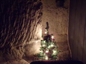 Les Troglos de Beaulieu, Bed and Breakfasts  Loches - big - 7