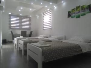 Apartments Airport Inn, Апартаменты  Dubrave Gornje - big - 10