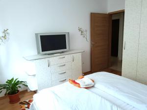Grand'Or Home Loft, Ferienwohnungen  Oradea - big - 9