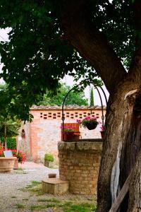 Casa Di Campagna In Toscana, Загородные дома  Совичилле - big - 158
