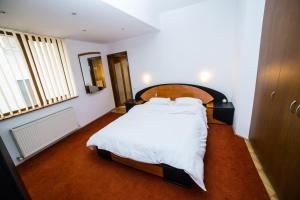 Aviatorilor Business Flat, Appartamenti  Floreasca - big - 17