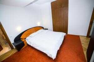 Aviatorilor Business Flat, Appartamenti  Floreasca - big - 23
